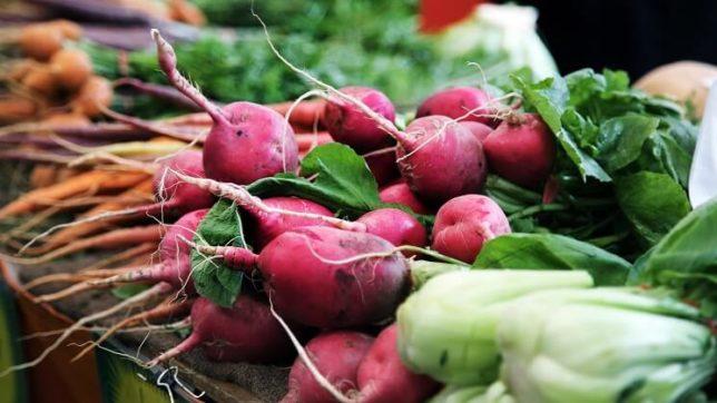 ビーツやチンゲン菜、人参の色とりどりの野菜たち